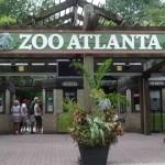 Zoo Atlanta Entance